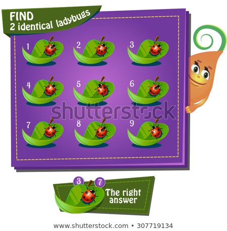 Vinden identiek lieveheersbeestjes spel kinderen taak Stockfoto © Olena