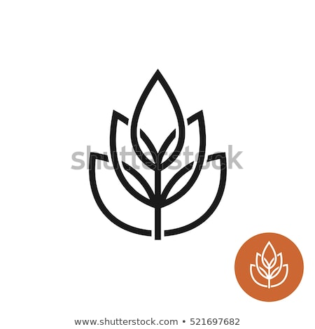 Icon of nutrition linear style white background Stock photo © Olena