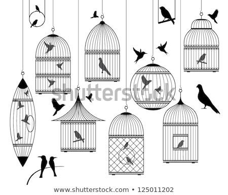 pássaro · ramo · gaiola · vazio · gaiola · tecido - foto stock © olena