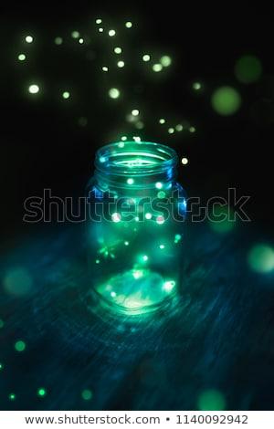 Luciole lumières ouvrir jar animaux illustration Photo stock © lenm