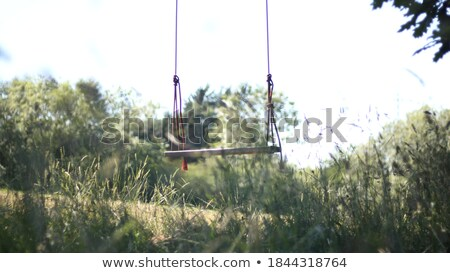 Herbeux domaine arbre Swing herbe jardin Photo stock © IS2