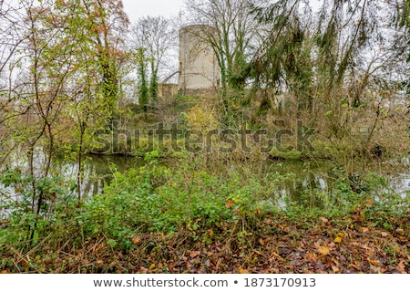 Castle towers with river and woods in the background Stock photo © hraska
