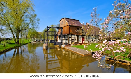 Raddusch Mill, Spree Forest in spring Stock photo © LianeM