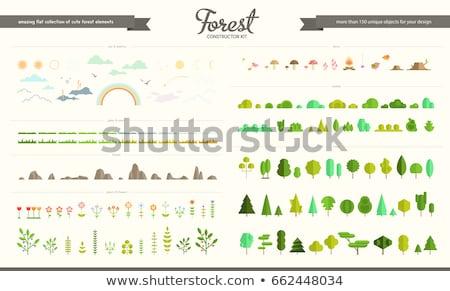 différent · plantes · illustration · blanche · feuille · vert - photo stock © bluering