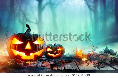 Scary halloween pompoenen nacht vakantie donkere Stockfoto © romvo