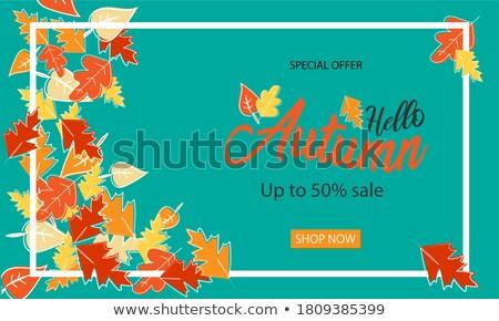 Winst poster kleurrijk document analytics bars Stockfoto © robuart