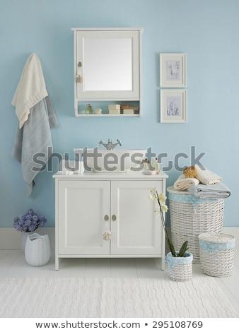 Fehér tükör faliszekrény fürdőszoba izolált üveg Stock fotó © magraphics