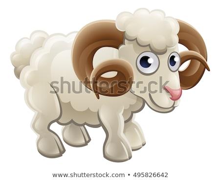 Mosolyog rajz kos illusztráció birka állat Stock fotó © cthoman