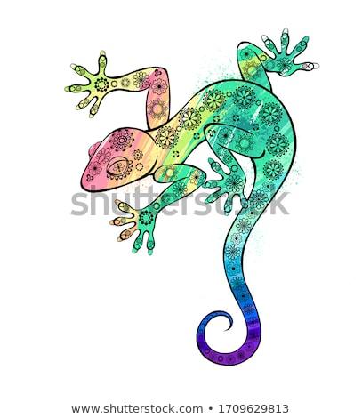 Stockfoto: Cartoon · gekko · illustratie · dier · grafische · top