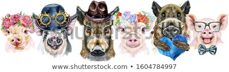 Border from pigs with hearts. Watercolor portraits of pigs and boars Stock photo © Natalia_1947