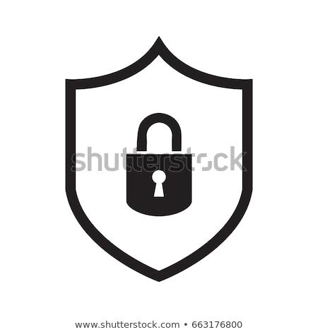 Soyut güvenlik vektör ikon örnek yalıtılmış Stok fotoğraf © kyryloff