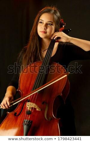 magányos · zeneszerző · játszik · cselló · musical · pezsgő - stock fotó © ra2studio