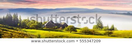 kilátás · folyó · bankok · zöld · fák · kék - stock fotó © artjazz
