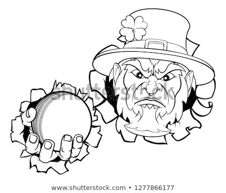 Shamrock · mascotte · illustratie · vakantie · geïsoleerd · clip · art - stockfoto © krisdog