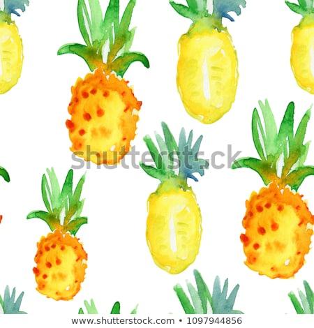 Ananász fehér vízfesték illusztráció izolált festék Stock fotó © ConceptCafe