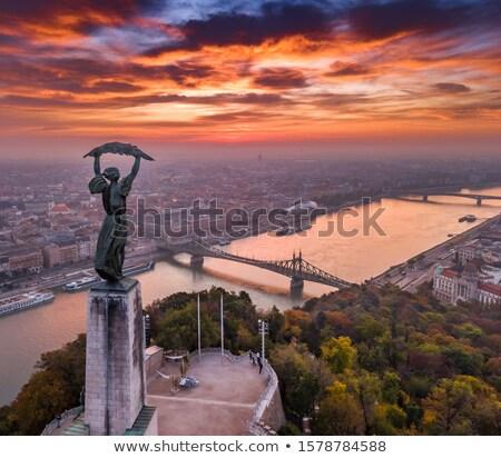 Libertà ponte danubio fiume Budapest scenico Foto d'archivio © xbrchx