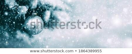 Elmosódott karácsony fenyőfa hó hópelyhek Stock fotó © Wetzkaz