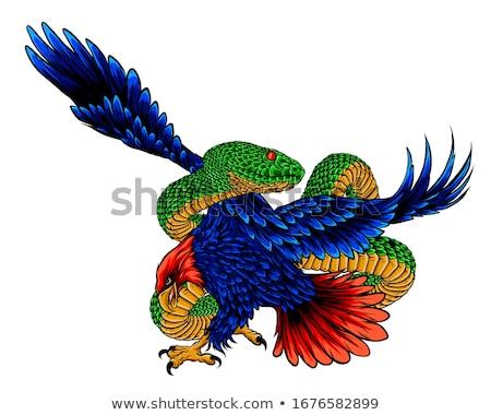 Golden Eagle Grappling Rattlesnake Drawing Stock photo © patrimonio