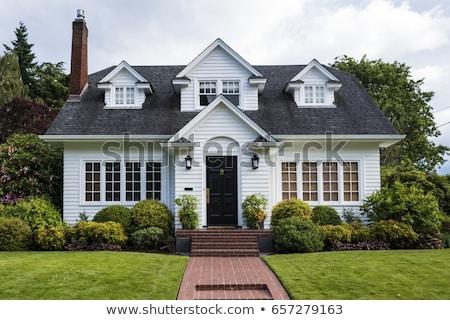 ストックフォト: Suburban Home