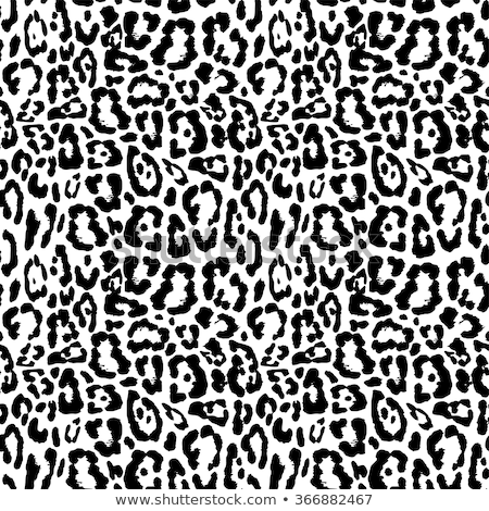 black and white leopard background. Stock Vector illustration Stock photo © kyryloff