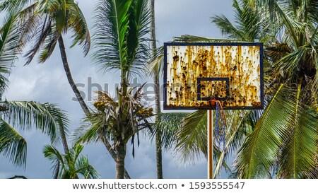 Empty deserted outdoor basketball court Stock photo © Giulio_Fornasar