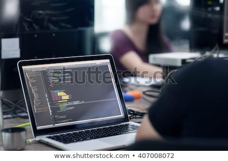 Dolgozik iroda csapat emberek dolgoznak üzlet projektek Stock fotó © robuart