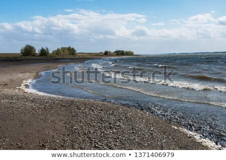 Reservatório sibéria Rússia ensolarado verão dia Foto stock © olira