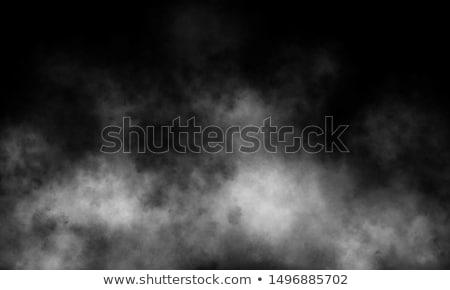 Mgły samotny drzewo dziedzinie Świt wygaśnięcia Zdjęcia stock © CaptureLight