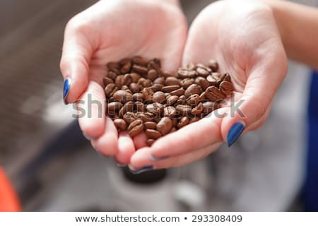 beautiful woman holding coffee beans in her hands stock photo © rob_stark