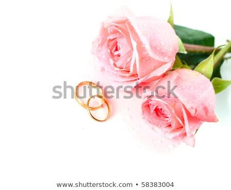 Alyans beyaz altın taze güller Stok fotoğraf © angelsimon