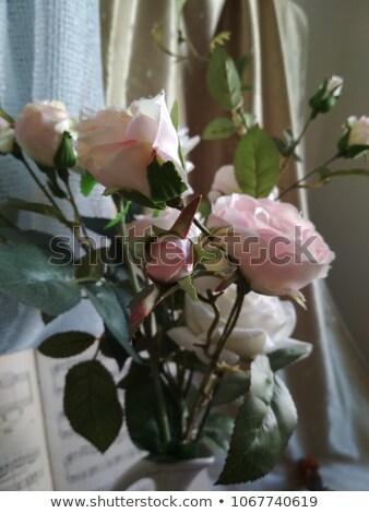 książki · kwiat · odizolowany · biały · liści · edukacji - zdjęcia stock © srnr