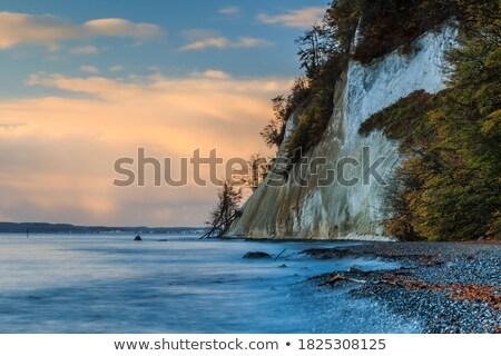 Stromy wybrzeża Norwegia lata rzeki dolinie Zdjęcia stock © gewoldi