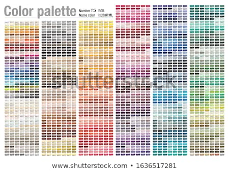 Pantone color scheme Stock photo © ozaiachin
