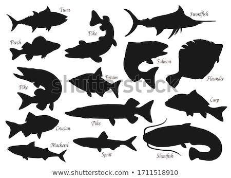 силуэта · рыбы · морем · знак · черный · рыбалки - Сток-фото © perysty