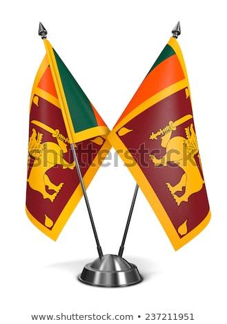 миниатюрный флаг Шри Ланка изолированный заседание Сток-фото © bosphorus