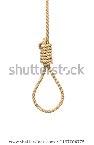 Hanging gallows rope with knot, isolated on white  Stock photo © inxti