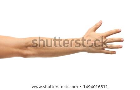 Masculino braço forte bíceps fitness Foto stock © pressmaster
