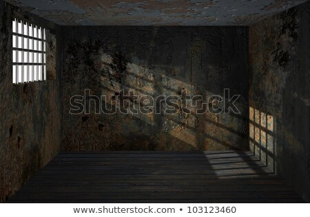 Gloomy dungeon with dirty rusty wall and guarded window. Stock photo © Leonardi