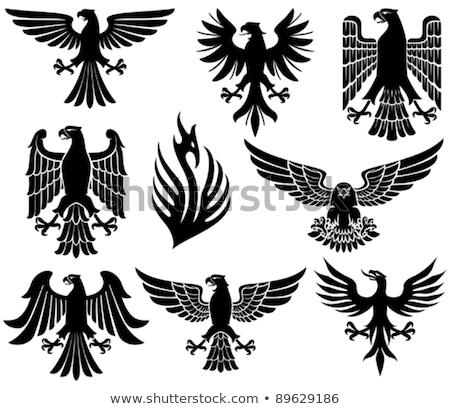 heraldic eagle stock photo © derocz