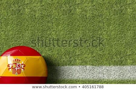 Soccer ball with Spain flag on pitch Stock photo © stevanovicigor