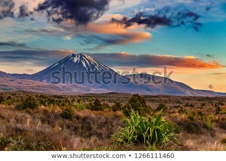 mount ngauruhoe active volcano in new zealand stock photo © dirkr