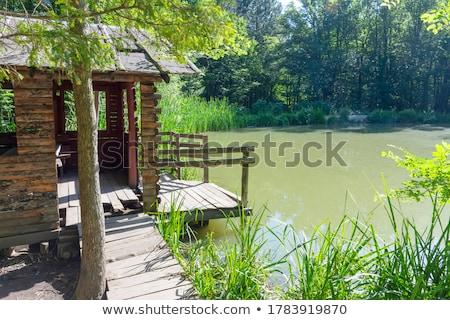 small hut stock photo © zhekos