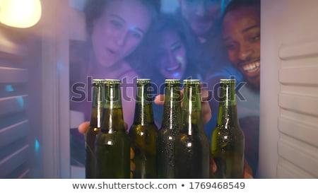 twee · bier · flessen · vergadering · ijs · witte - stockfoto © fisher