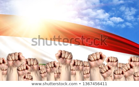 Hungary Labour movement, workers union strike Stock photo © stevanovicigor