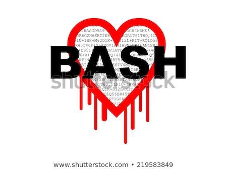 bash bourne again shell security hacking problem stock photo © slunicko