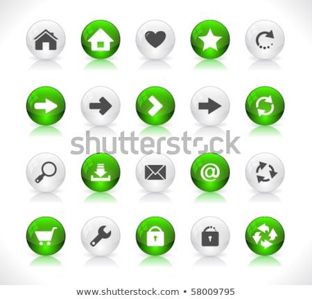 Zoom verde vetor ícone botão teia Foto stock © rizwanali3d