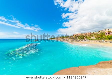 Picturesque landscape of Tenerife Stock photo © amok