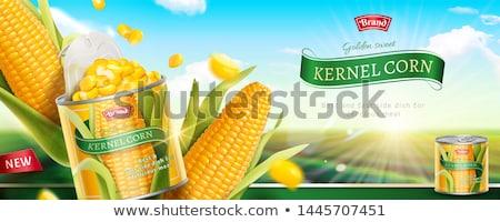 Dobozos kukorica textúra természet nyár szín Stock fotó © ozaiachin