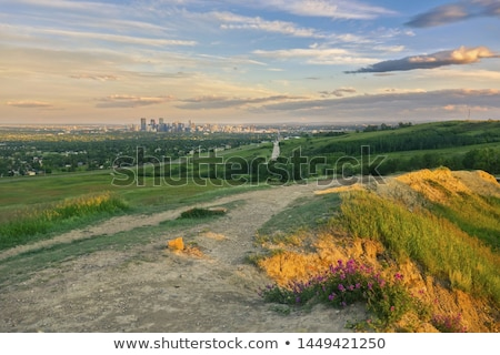 distant panorama of calgary stock photo © benkrut