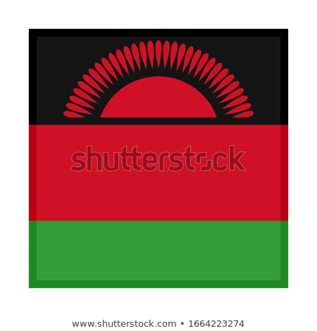 Square sticker with flag of malawi Stock photo © MikhailMishchenko